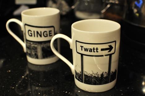 lesser spotted mug twatt ginge