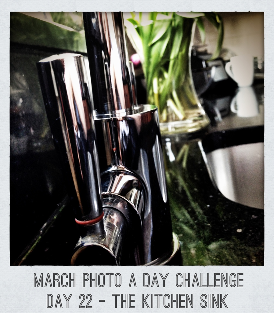 march photo a day challenge day 22 the kitchen sink in a k cup